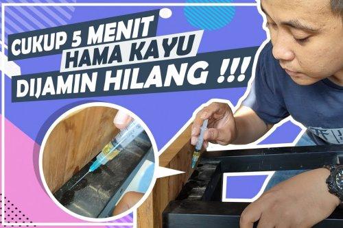 Cara Ampuh Membasmi Hama Rayap Dan Teter Kayu Furniture